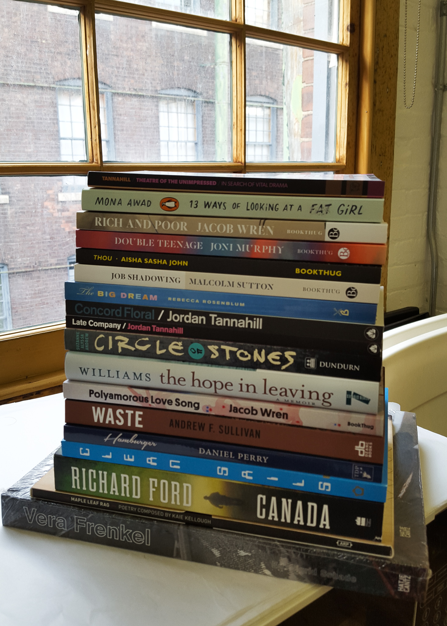 a stack of books near window