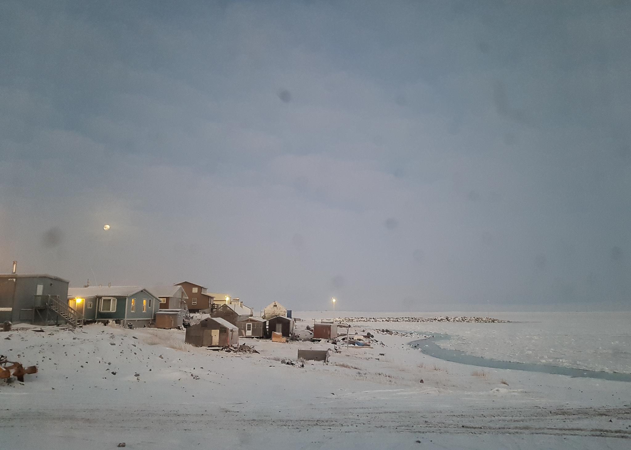 houses among the snow