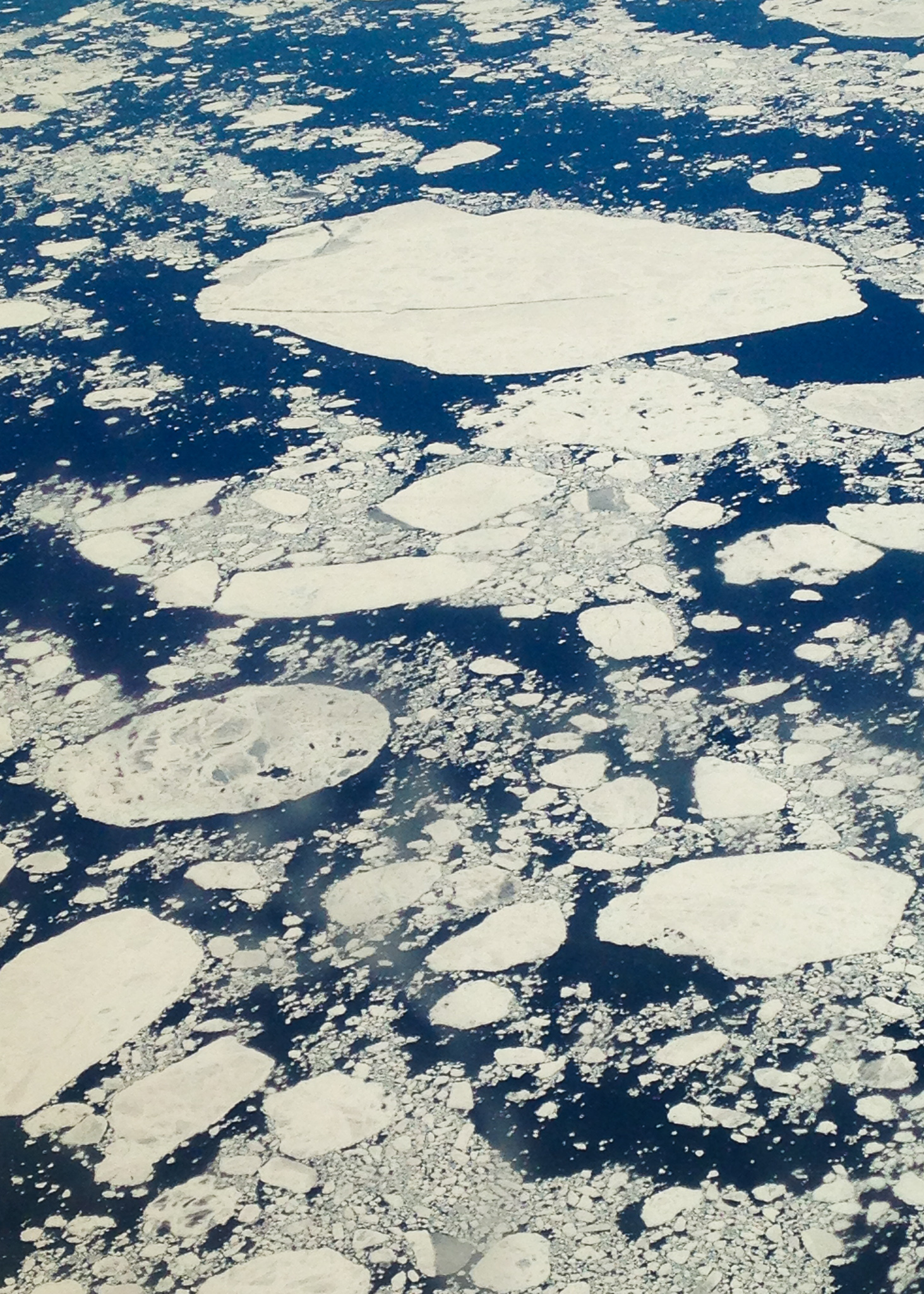 ice sheets on top of water